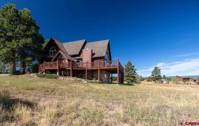 Pagosa Springs Single Family Home For Sale: 255 Mariposa Drive