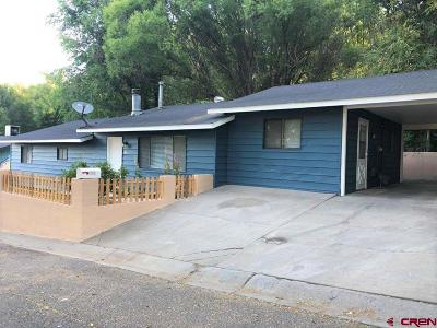 Delta Single Family Home For Sale: 609 Tonys Alley