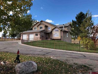 Durango Single Family Home UC/Contingent/Call LB: 1542 Cr 302