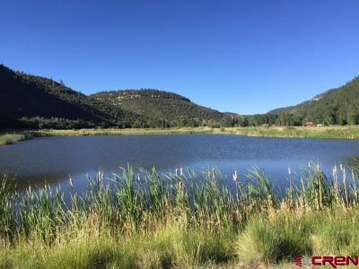 Dolores Residential Lots & Land For Sale: 18941 Road 34.5 Lot #11