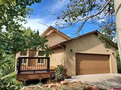 Durango Single Family Home For Sale: 47 Elm Ct