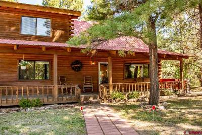 Pagosa Springs Single Family Home For Sale: 351 W Golf Place