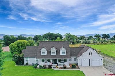 Montrose Single Family Home For Sale: 16156 6280 Road