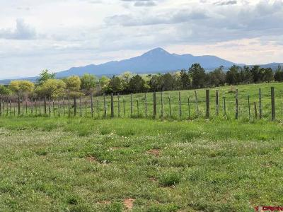 Dolores Residential Lots & Land For Sale: 24187 Road S.85
