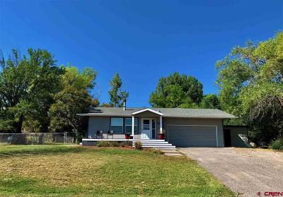 Montrose Single Family Home For Sale: 66168 Crestview Drive