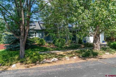 Durango Single Family Home For Sale: 2041 Mockingbird Valley Court