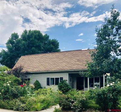 Paonia Single Family Home For Sale: 1107 3rd Street