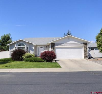 Delta County Single Family Home For Sale: 785 Dutton Street