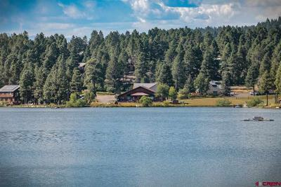 Pagosa Springs Single Family Home For Sale: 1253 Cloud Cap Avenue #Units #A