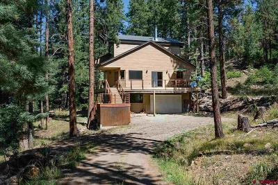 La Plata County Single Family Home For Sale: 446 Skyline Drive