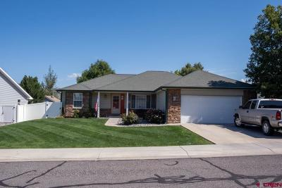 Montrose Single Family Home For Sale: 2217 Freedom Way
