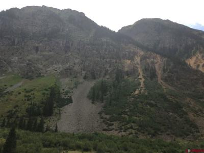 Silverton Residential Lots & Land For Sale: Cr 4 Other