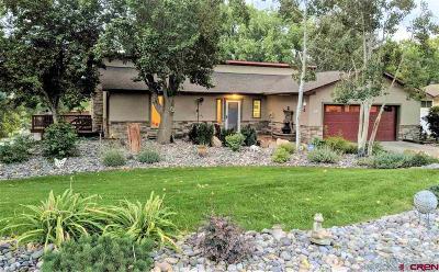 Delta County Single Family Home For Sale: 1100 Hartig Drive