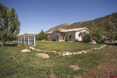 Durango Single Family Home For Sale: 4036 S Hwy 550