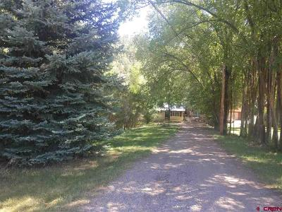 Durango Single Family Home For Sale: 1326 Cr 250