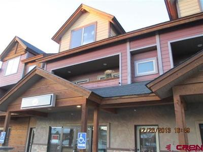 Pagosa Springs Condo/Townhouse For Sale: 191 Talisman Drive #Unit 204