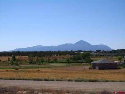 Dolores Residential Lots & Land For Sale: Road 28.3