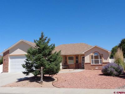 Montrose Single Family Home For Sale: 2609 Glen Mor Drive