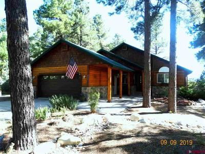 Pagosa Springs Single Family Home For Sale: 802 Cloud Cap Avenue