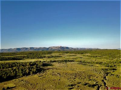 Mancos Residential Lots & Land For Sale: Hwy 184