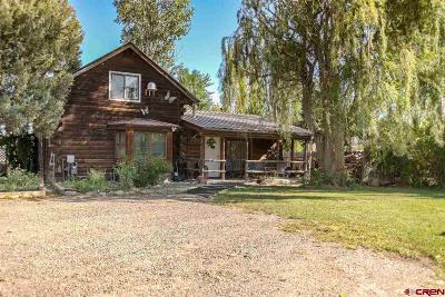 Montrose Single Family Home For Sale: 13388 Marine Road