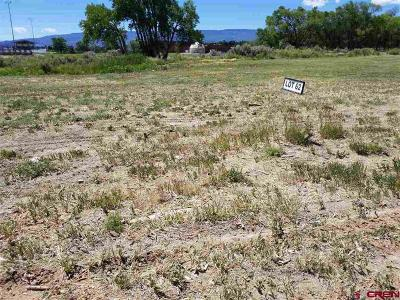 Cedaredge Residential Lots & Land For Sale: 620 SE Pinyon Street