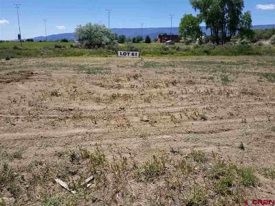 Cedaredge Residential Lots & Land For Sale: 710 SE Pinyon Street