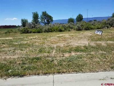 Cedaredge Residential Lots & Land For Sale: 750 SE Pinyon Street