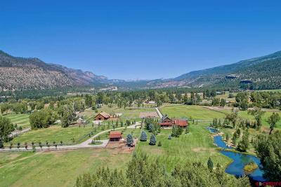 La Plata County Single Family Home For Sale: 10582 Cr 250
