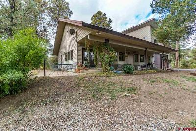 Single Family Home For Sale: 1490 Us Hwy 160 Highway