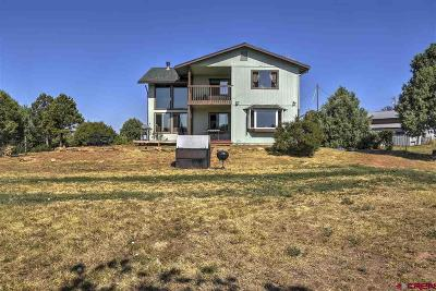 Mancos Single Family Home For Sale: 35066 Hwy 184