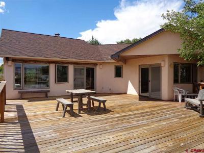 Montrose Single Family Home UC/Contingent/Call LB: 63272 Orange Road