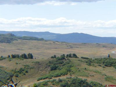 Residential Lots & Land For Sale: 691 Crest
