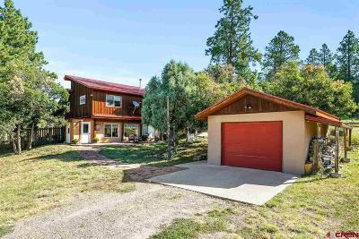 Durango Single Family Home For Sale: 1300 Meadow Road