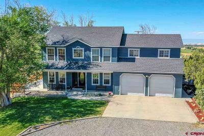 Montrose Single Family Home For Sale: 21835 Government Springs Road