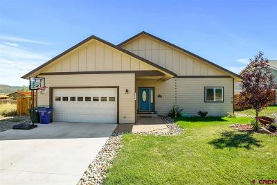 La Plata County Single Family Home For Sale: 1322 Kremer Drive