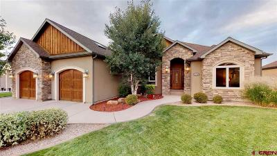 Montrose Single Family Home For Sale: 2919 Outlook Road