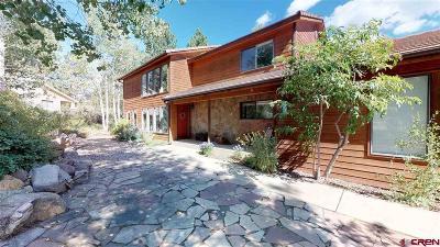 Durango Single Family Home For Sale: 1132 Oak Drive