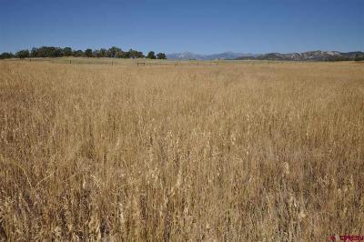 Durango Residential Lots & Land For Sale: 303 Mama Llama Lane