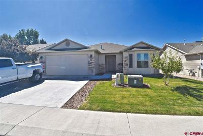Montrose Single Family Home For Sale: 1618 Bighorn Street