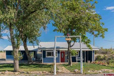 Montrose Single Family Home For Sale: 553 6530 Road