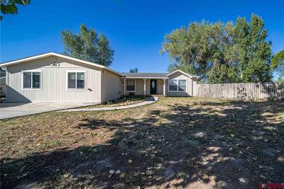 Montrose County Mobile/Manufactured UC/Contingent/Call LB: 1901 Kellie Drive