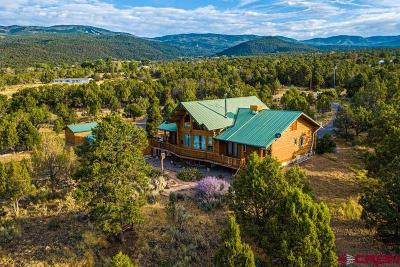 Cedaredge Single Family Home For Sale: 20828 Brimstone Road