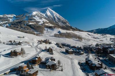 Almont, Crested Butte, Mt. Crested Butte Single Family Home For Sale: 39 Whetstone Road
