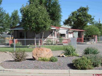 Delta County Single Family Home For Sale: 611 E 4th Street