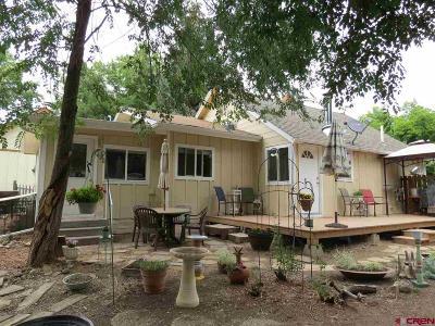 Cedaredge Single Family Home For Sale: 150 NW 4th Street