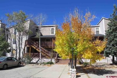 Pagosa Springs Condo/Townhouse NEW: 89 Valley View Drive #3198