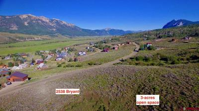 Crested Butte, Mt. Crested Butte, Almont Residential Lots & Land For Sale: 2538 Bryant Avenue