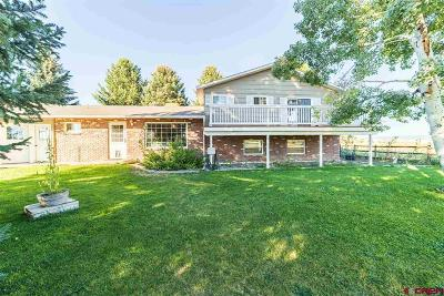 Montrose County Single Family Home For Sale: 60835 Maple Grove Road
