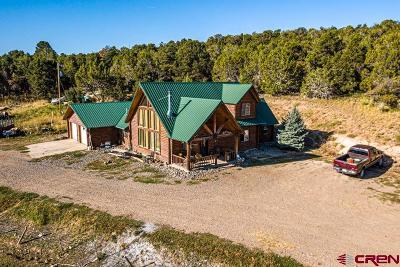 Cedaredge Single Family Home NEW: 17586 2550 Road